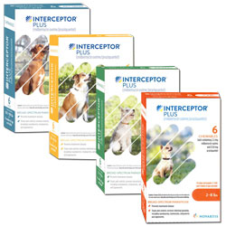 Interceptor Plus (Prescription only)
