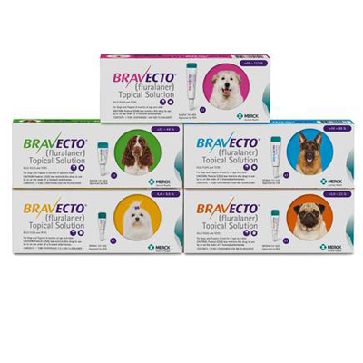 Bravecto *TOPICAL *- Dogs Rx