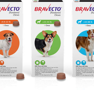 Bravecto 3 month Chewable (Prescription Only)