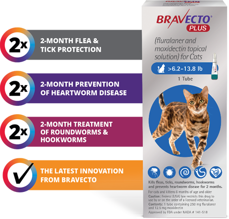Bravecto PLUS -Feline Heartworm + Flea +Tick