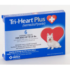 TriHeart Plus - (Prescription only)